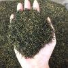艾达福 正山小种 武夷山桐木关  散装  2020年新红茶 厂家批发