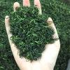 艾达福 野茶 安吉白茶 卷直形 明前一级 绿茶批发 2020年新茶