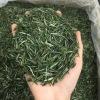 艾达福 仙毫南京雨花 明前豆香春茶 2020年新茶 散装 厂家批发