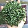艾达福 神农架荒野 松针 雨前手工茶 花果香 绿茶批发 2020年新茶