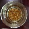 艾达福 苦荞麦茶 大凉山 黑黄金色 全胚芽全株 散装批发 纯麦香